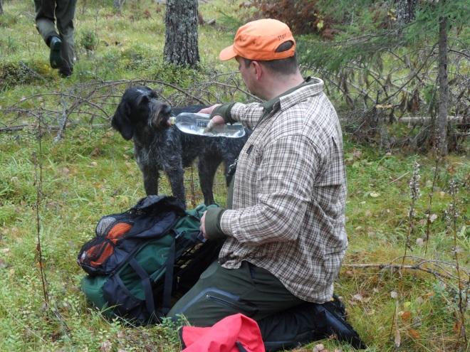 Spira får vatten efter sitt sök av husse Juha.