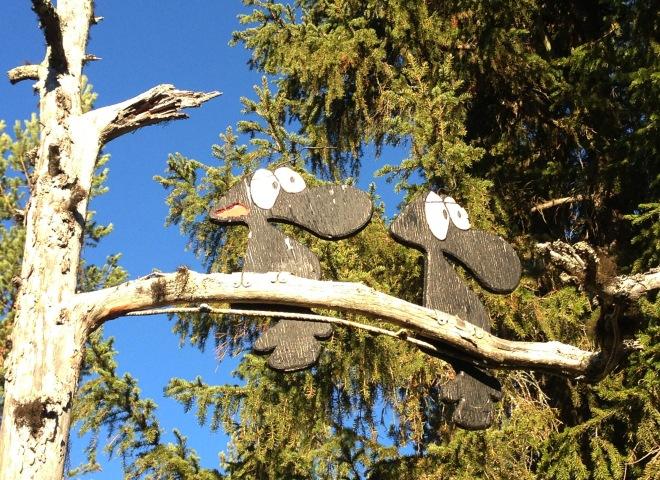 Här några fåglar som jag är lite osäker på vilken roll de spelar.