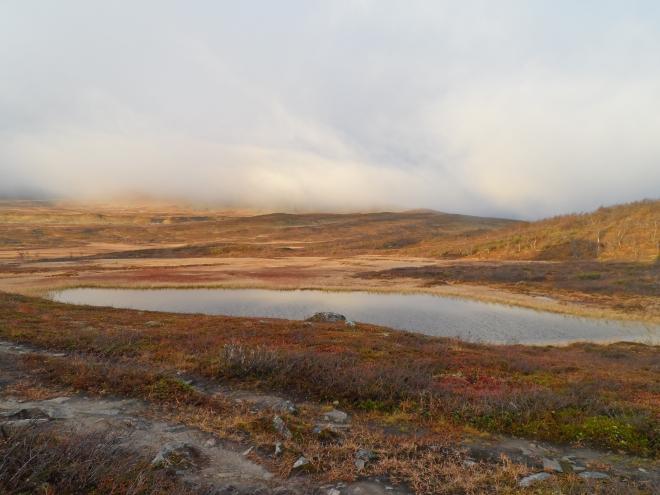 På baksidan av stugan fanns den här lilla sjön där man fick tvätta sig om man ville. Jag kände på temperaturen men förfrös handen – typ. Så det blev avskrubbning av det värsta med uppvärmt vatten i stugan.