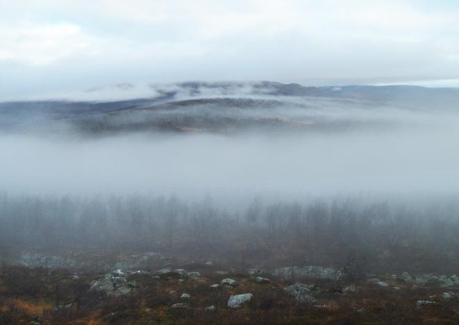 Dimman slog till igen på sista dagen. Spökligt och läckert.