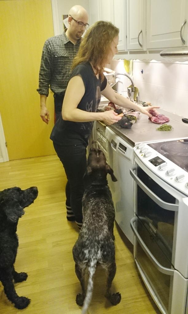 Hundarna hade också stort intresse av kursen.