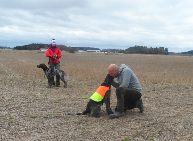 Ny dag och ny kursledare, Sören, som också han visade på andras hundar hur vi skulle göra.