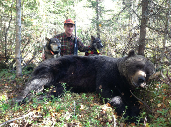 Robert Salomonsson med  en björn han fällde tillsammans med hundarna Urak och Frisco. Foto: Natalie Jonsson